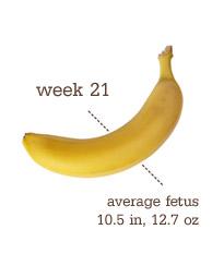 Week 21 - Banana
